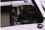 Engine Compartment and trunk